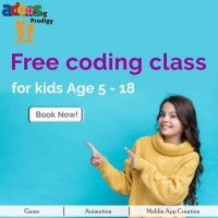 Live 1:1 Online Coding Classes for Kids