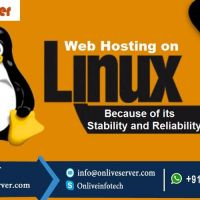 Know The Latest Linux Web Hosting Plans By Onlive Server