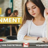 CHEAP ASSIGNMENT HELP  & WRITING SERVICES IN UK @ 50% OFF