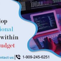 Develop Professional Websites within Your Budget