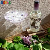 Buy Gin Online In Cardiff