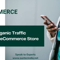 Boost Your Sales Exponentially With eCommerce SEO Services