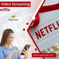 Launch a Robust Netflix Like App by using our app solution
