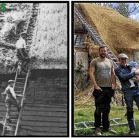 Thatch Roofing Services UK