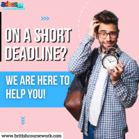 Avail the best coursework services in the UK