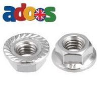 Flange Nuts | Serrated Nuts | Flange Nuts Manufacturers
