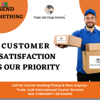 courier for international delivery