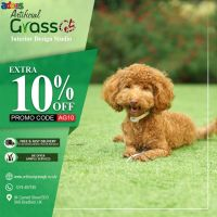 Transform your lawn and create the lovely garden