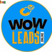 The best online lead generation company - wowleads
