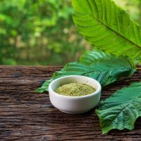 How Long Can Kratom Stay In Your Body?