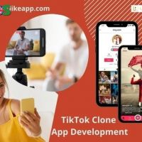 Ingress into the lucrative business with the TikTok clone app