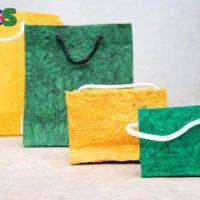 Seed paper and plantable paper and paper products