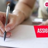 Get The Best Assignment help UK from Experts.