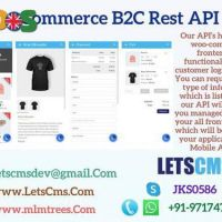 Business to Customer Rest API for Woocommerce
