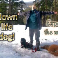 Slow down your life with dog!