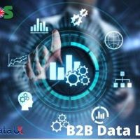 Here Are The Best B2B Data Suppliers