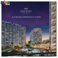 Luxurious 2/3/4Bhk Apartments & Penthouse in Ace Divino at Noida