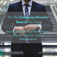 Download Report On Company Director Check