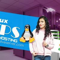 Get Affordable, Powerful Linux VPS  Hosting by Onlive Server