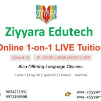 Get The Best One-On-One Live Online Tuition Classes