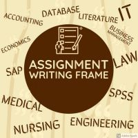 Assignments, Reports, Essays, Thesis Proofreading and Helping Hand