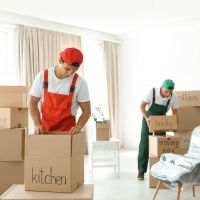 Expert Removals and Waste Disposal Service in Plymouth