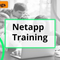 lean best netapp online training by hkr trainings