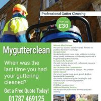 Professional Gutter Cleaning Services