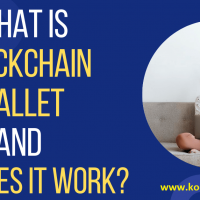 How Does a Blockchain Wallet Work
