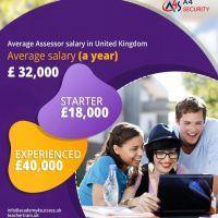 Assessor jobs are for everyone and is a good start for your profession