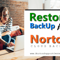 Recover Files From Norton Backup | Norton Support Center