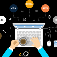 why web development services is important for company